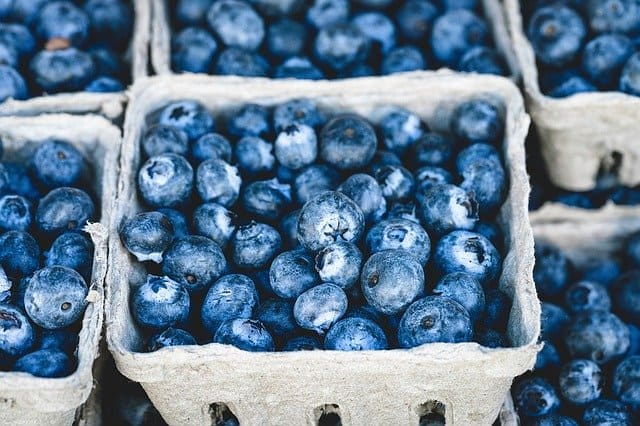 Are Blueberries Keto? Carbs In Blueberries